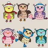 Set of funny owls. Royalty Free Stock Photos
