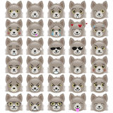 Set of funny pup emoticons. Smiling grey pups with different emotions from happiness to angry isolated on white background. Can be used for logos, icons Royalty Free Stock Image