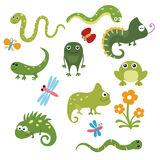 Set funny reptiles. Set of different reptiles on white background Stock Photography