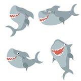Set funny sharks. Set of different sharks on white background Stock Image