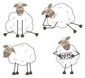 Set of funny sheep. On white background Royalty Free Stock Image