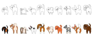 Set of funny small dogs showing their butts. Set of funny small dogs with and without colors showing their butts stock illustration