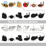 Set of funny small insects. Find correct shadow. Stock Photos