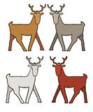 Set of Funny Wild Deer Animal Stock Photos