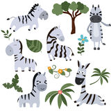 Set funny zebras. Set of different zebras on white background Royalty Free Stock Photography