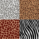 Set of fur patterns Royalty Free Stock Images