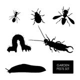 Set of garden pests on a white background. Silhouette of insects Royalty Free Stock Image