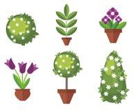 Set of garden plants Stock Images