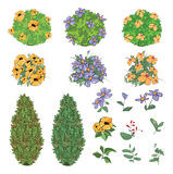 Set of garden plants with flowers for you design and computer game Stock Images