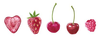 Set of garden red berries, heart-shaped and round, watercolor clip art vector illustration