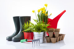 Set of garden tools and garden flowers Stock Photos
