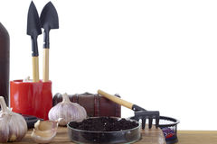 Set of garden tools in a glass pen Royalty Free Stock Photo