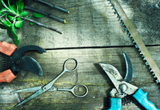 Set of garden tools. Pruning in the garden. Stock Images