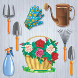 Set for the gardener and basket of roses Royalty Free Stock Photo