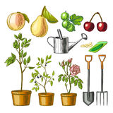 Set of gardening items. Royalty Free Stock Photography