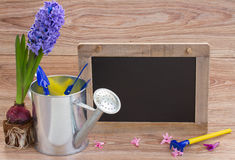 Set of gardening tools with black board Stock Images