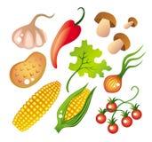 Set Gemüse Stockfotografie