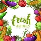 Set Gemüse Lizenzfreie Stockfotografie