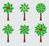 Set of geometric cherry tree flat design. Geometric cherry tree flat design Royalty Free Stock Photography