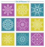 Set of geometric and floral linear monogram design on color back Stock Photos
