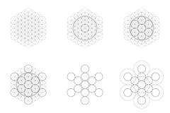 Set geometrical kształty i elementy Święty geometria kwiat życie i Metatron sześcianu przemiana ilustracja wektor