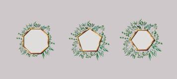 Set of geometrics golden frames and leafs vector illustration