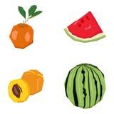Set geometryczne owoc Fotografia Royalty Free