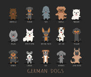 Set of german dogs Stock Image