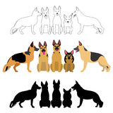 Set of german shepherd group. Line art, with colors, silhouette Royalty Free Stock Images