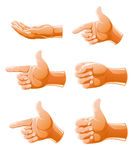 Set of gesture arm. Illustration isolated on white background Stock Photography