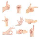 Set of gesturing hands. Isolated on white background Stock Photography