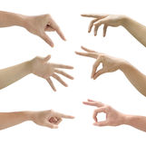 Set of gesturing hands isolated on white. Background Royalty Free Stock Photography
