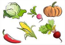 Set getrennten Gemüseteils 3. Lizenzfreie Stockfotografie