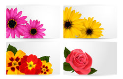 Set of gift cards with different colorful flower. Stock Photo