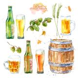 Set of a glass of a beer, bottle,barley,malt and hops. Picture of a alcoholic drink. vector illustration