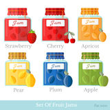 Set of glass jars with different fruit jam. Home preservation flat style icons Stock Photo