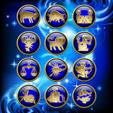 Set of glossy round zodiac icons with gold linear symbols on blu Stock Photos