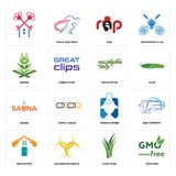 Set of gmo free, aloe vera, realestate, fishing store, sauna, eucalyptus, quran, rap, icons. Set Of 16 simple  icons such as gmo free, aloe vera, hazardous waste Stock Photo