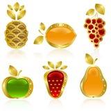 Set from gold fruit stock illustration