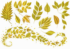 Set gold leaf. Autumn decorations. pattern . Stock Photos