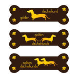 Set of golden dachshund kennel logo template Royalty Free Stock Photo