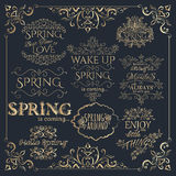 Set of golden headlines with Spring Quotes. Royalty Free Stock Images