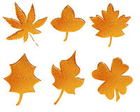 Set of golden pattern autumn leaves Stock Photography