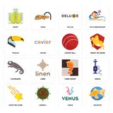Set of goldfish, venus, shooting stars, chess knight, chameleon, cricket ball, toucan, deluxe, paddy icons Stock Photo