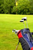 Waiting for the Putt royalty free stock photo