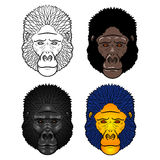 Set of Gorilla head .  on a white Stock Images