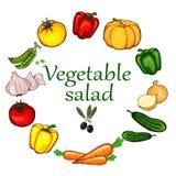 set grönsakwhite för bakgrund Royaltyfria Foton
