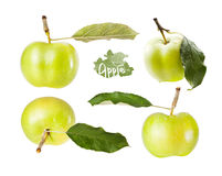 Set grönt äpple med leafen i olika vinklar Royaltyfri Fotografi