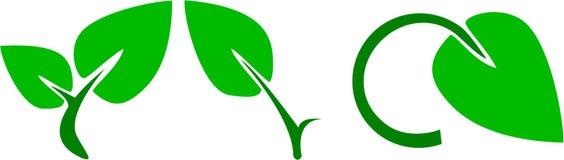Set grüne Blattikonen Stockfotografie