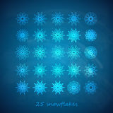 Set of 25  graceful snowflakes on the blue frosty background Stock Photo